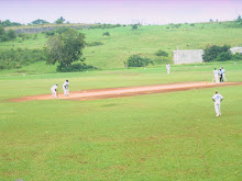Cricket in Mandeville