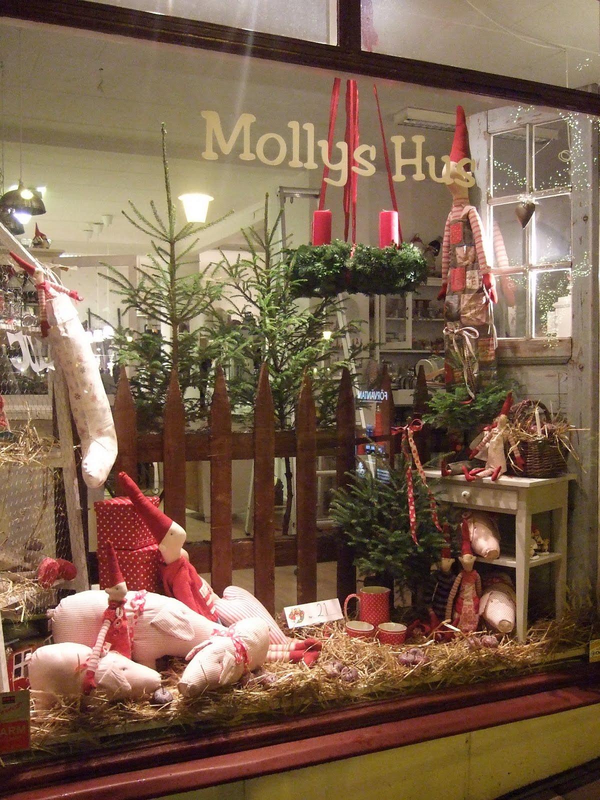 Mollys hus: november 2009