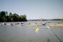 Potomac River Spoils