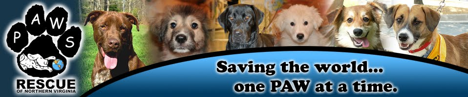 PAWS Rescue of Northern VA