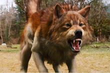 jacob como lobo