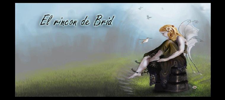 El Rincon de Brid