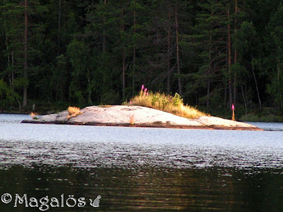 En liten ö vid mitt paradis. Fotot är taget på sommaren.