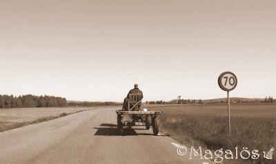 Häst med vagn, sett bakifrån. Sepia-ton.