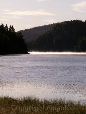 Dimma som stiger över älven. Taget 7.02 den 29 augusti 2007.