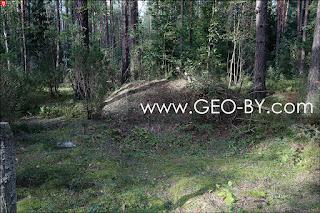 Ласток. Насыпанный холм в лесу