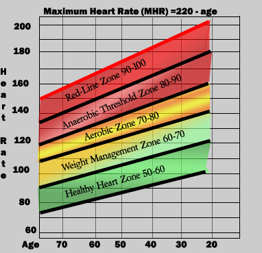 FREE 9+ Exercise Chart Templates in PDF | MS Word |Exercise Heart Rate Chart