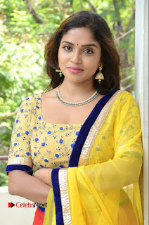 Actress Karunya Stills in Salwar Kameez at Vasudhaika 1957 Press Meet 0158
