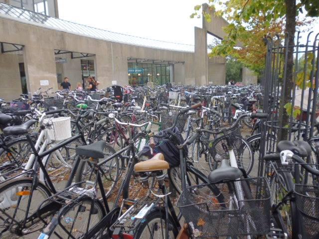 Copenhague tiene una extensa red de carriles bici, lo que le da el título de mejor ciudad para cicilistas