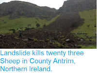 https://sciencythoughts.blogspot.com/2016/01/landslide-kills-twenty-three-sheep-in.html