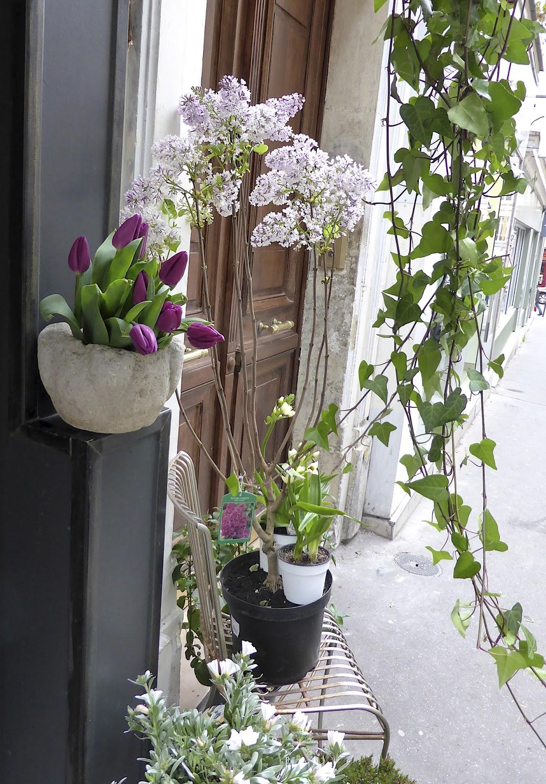 manon 21 paris et ses fleurs. Black Bedroom Furniture Sets. Home Design Ideas