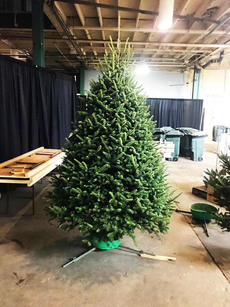 Kaleidoscope Farms: Kaleidoscope Farms Christmas tree named 2018 ...
