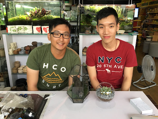 Make a terrarium with your friend!