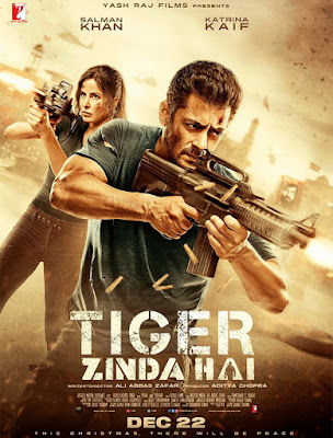 10 Amazing Real Facts About Tiger Zinda Hai 2017 Movie In Hindi