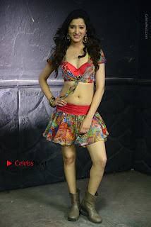 Actress Richa Panai Latest Stills in Rakshaka Bhatudu Telugu Movie  0010.JPG