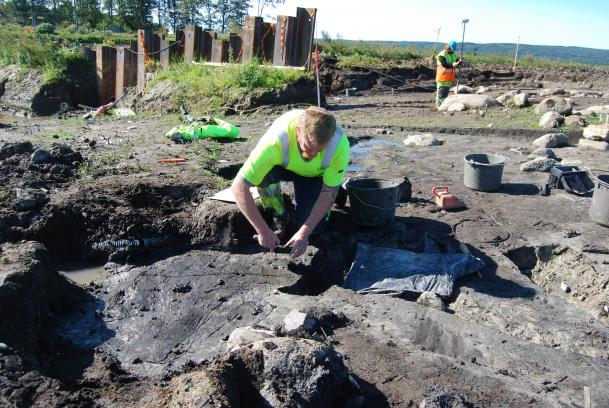 Fish accounted for surprisingly large part of Stone Age diet in Scandinavia