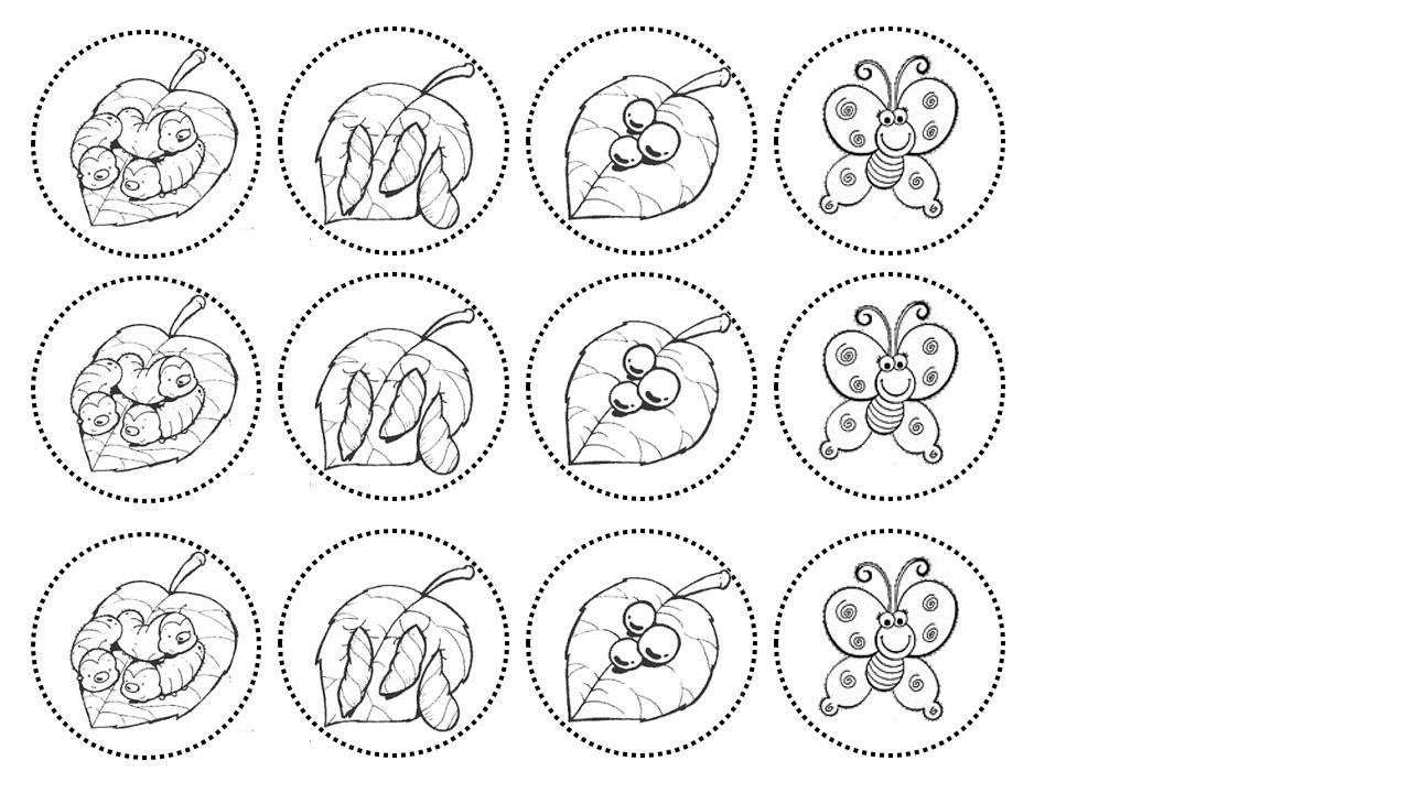 Suficiente DANI EDUCAR: Sequencia da metamorfose da borboleta CV88