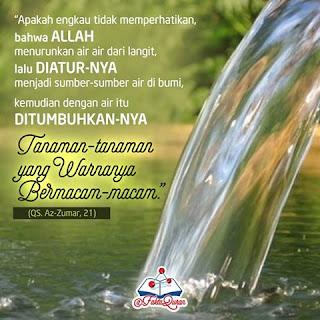 Belajar kehidupan dari air