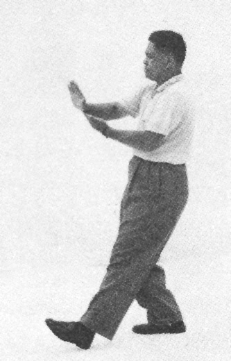 Tai Chi Chuan (Square Form) 115. Step Up To Pat The Horse High