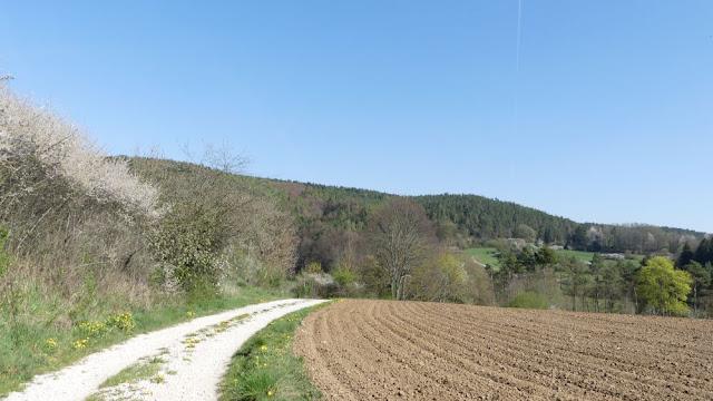 Fränkische Schweiz - Spazierweg bei Plankenfels