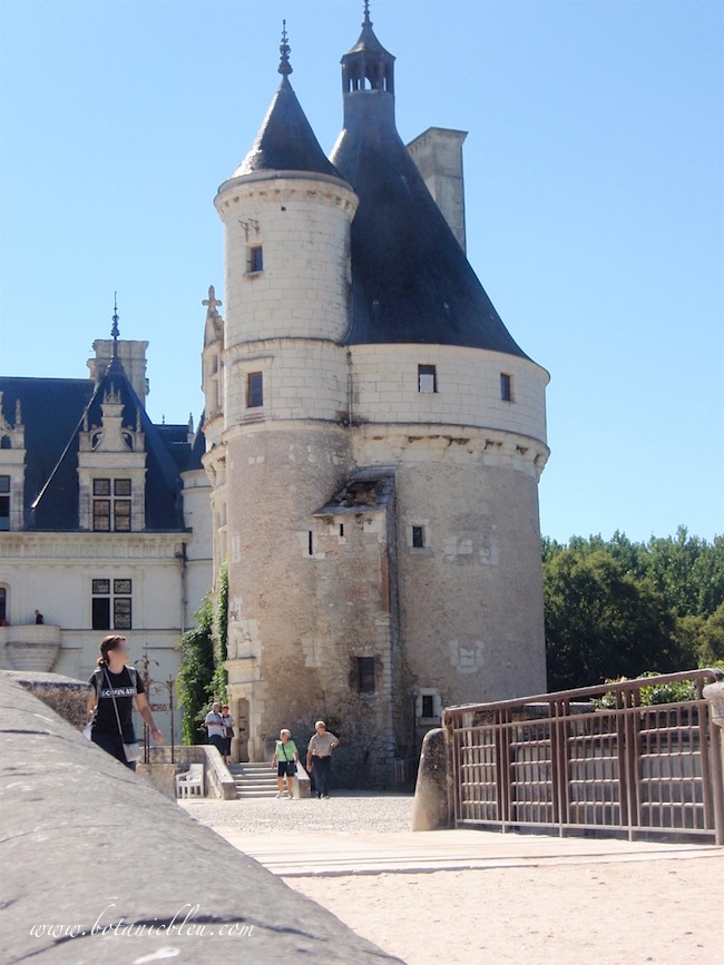 chenonceau-marques-tower-two-turrets
