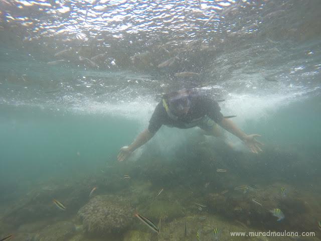 Saya Snorkeling di Pantai Nglambor 5