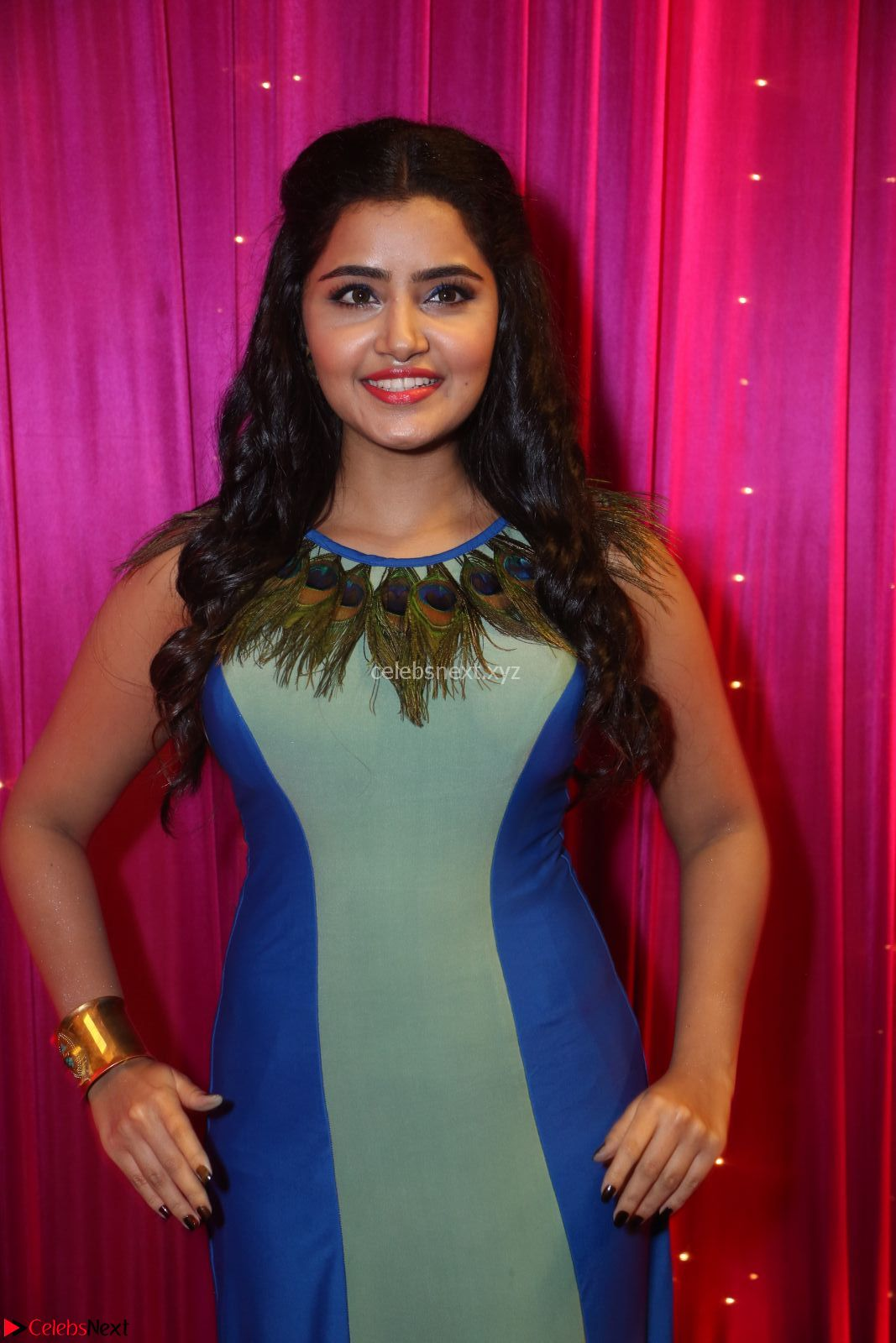 Anupama Paramesvaran in beautiful Sleeveless Gown at Zee Telugu Apsara Awards 2017 9th April 2017~ CelebsNext Exclusive