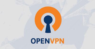 cara internet gratis menggunakan openvpn