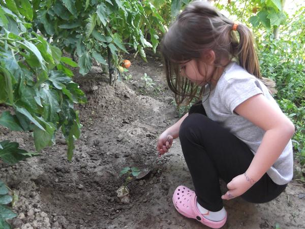 οικολογικές χειροτεχνίες για παιδιά, ανακύκλωση για παιδιά, περιβαλλοντική εκπαίδευση