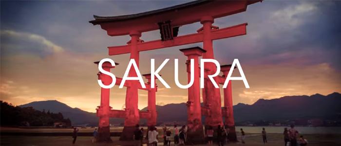 曲名に日本語が使われているEDMの有名な曲を紹介