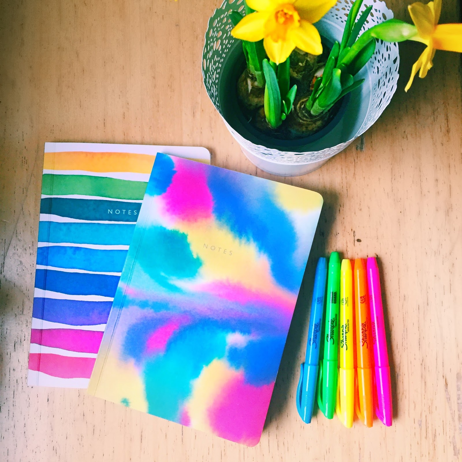 Notebooks-colourful-journaling-health-fitness-sharpies-rainbow-flowers