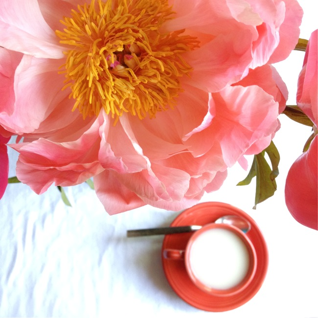 peonies and tea, Fiestaware, Homer Laughlin Fiestaware, Fiesta Scarlet, Homer Laughlin Scarlet Fiestaware, tea and peonies
