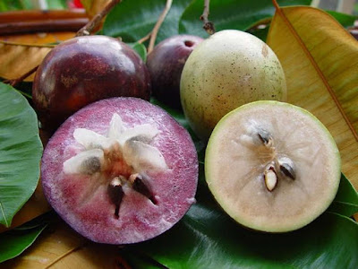 Some Benefits of Star Apple fruit for your Healty and Beauty