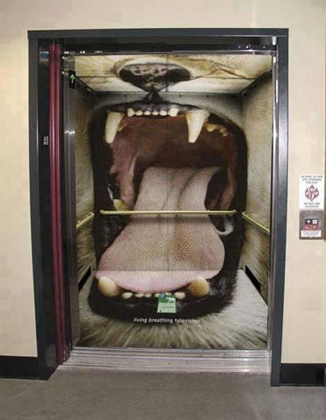 bentuk dan desain lift yang unik lucu dan kreatif-1