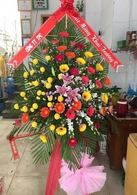 hoa tang khai truong hcm