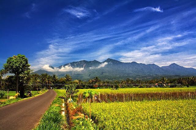 View arah Gunung Galunggung di perjalanan sekitar Sukaratu