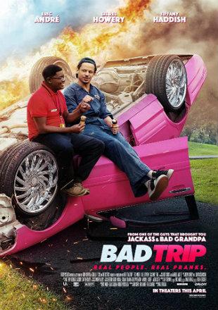 Bad Trip 2020 HDRip 720p Dual Audio In Hindi English