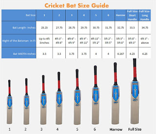 How to Choose A Cricket Bat In Hindi