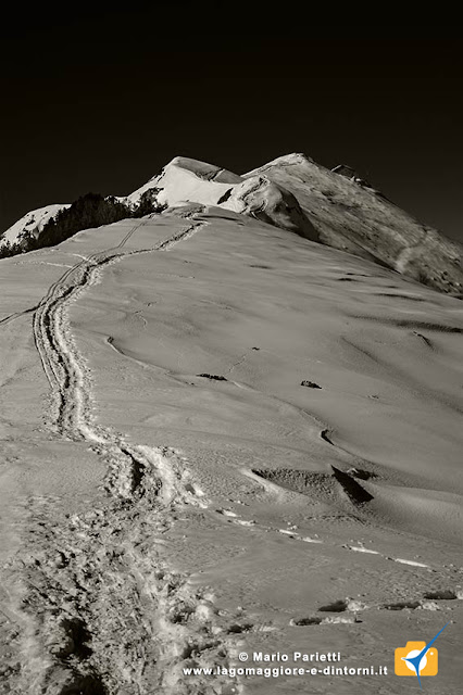 Monte Gambarogno in bianco e nero