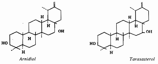 Thành phần hóa học CÓC MẲN - Centipeda minima - Nguyên liệu làm thuốc Chữa Ho Hen