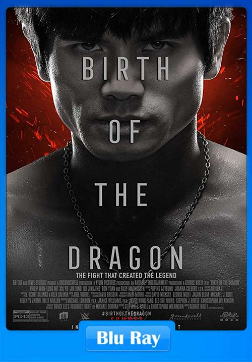 Birth of the Dragon 2016 UNCUT 720p Dual Audio BluRay Esub  x264 | 480p 300MB | 100MB HEVC