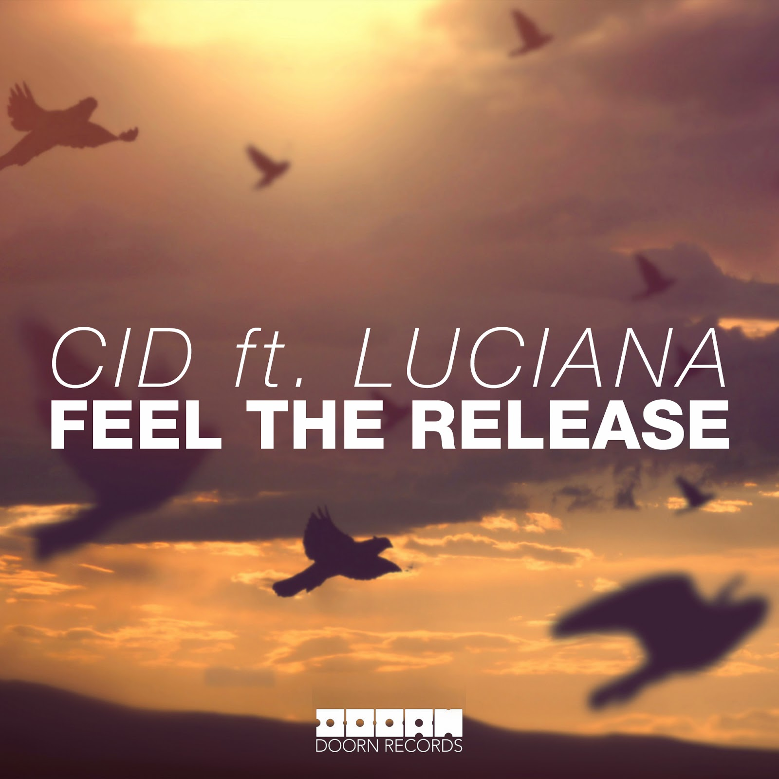 EDM Cover Arts: CID ft  Luciana - Feel The Release