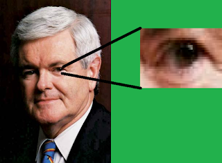 Eye of Newt Gingrich zoom close-up