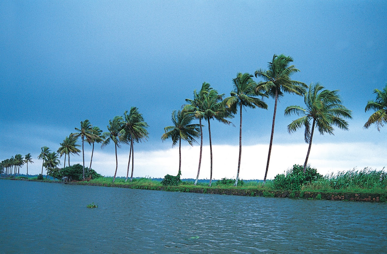 Kerala Backwaters Wallpapers Tourist Places In India Hd Wallpapers Images And Sight View