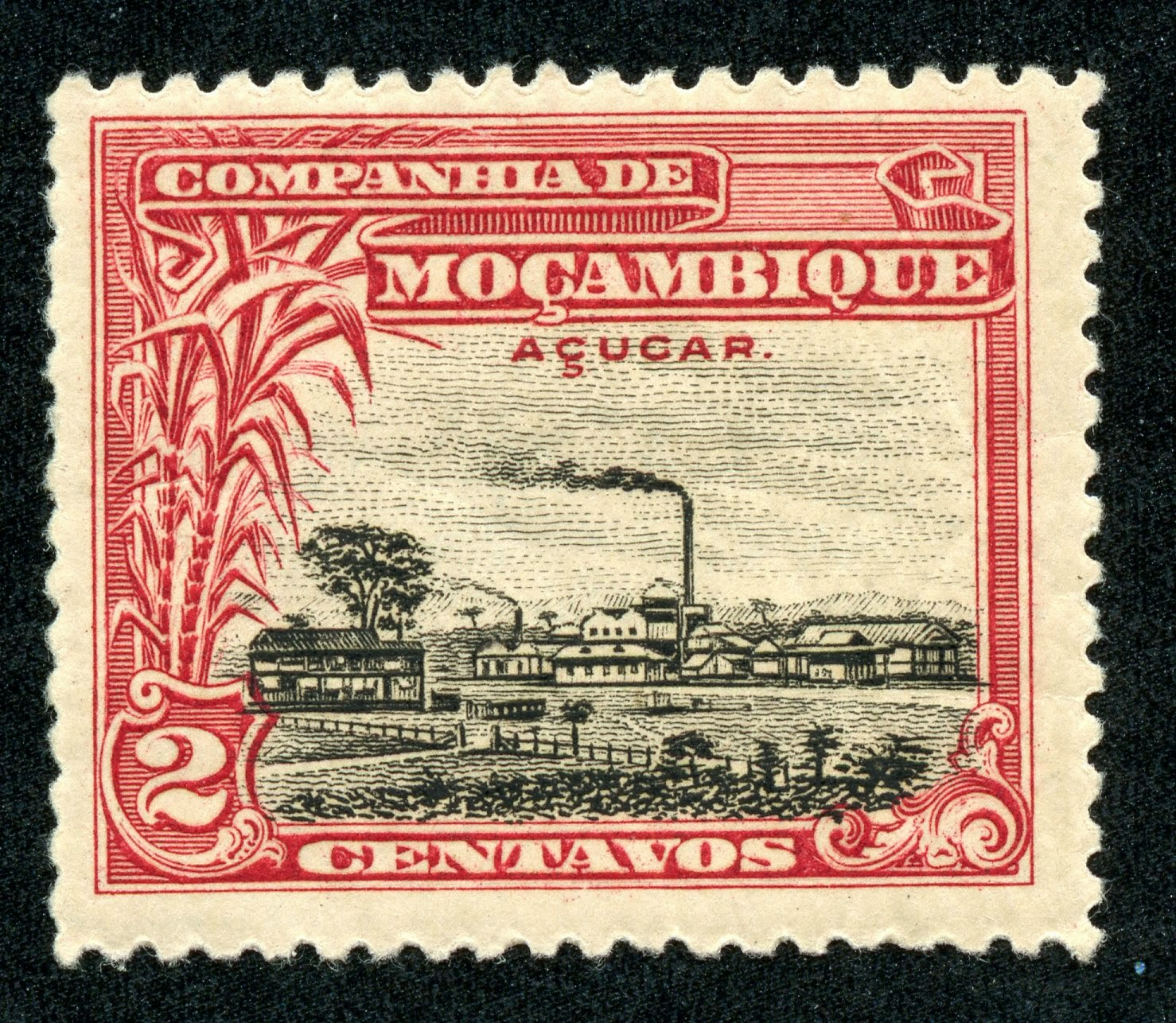 Big Blue 1840 1940 The Pictorials Of Mozambique Company
