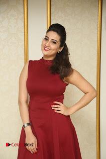 Telugu Tollywood Anchor Manjusha Pos in Red Short Dress  0003.JPG