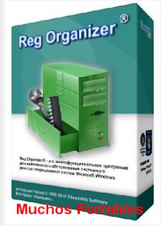Reg Organizer Portable