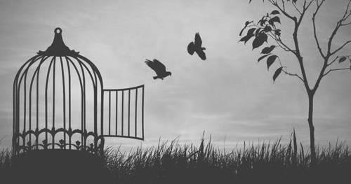 Recordar el pasado sin que duela.