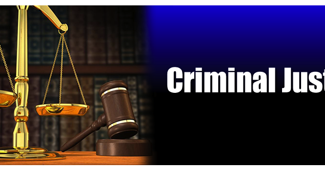 criminal justice organization and administration Explore the definition and the components of the criminal justice system  the phase of a case where a criminal offender  drug enforcement administration.