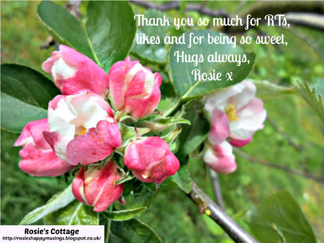 Rosies thank you card with apple blossom